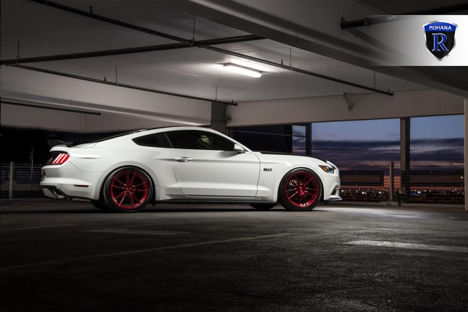 Mustang_rohana7